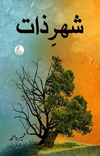 Shehrezaat by Umera Ahmed
